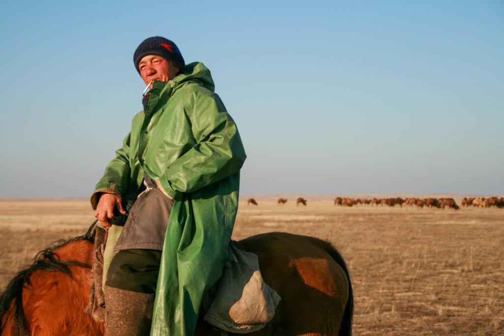 By Cara Kerven - Hired camel shepherd in Moinkum, Jambyl Province, Kazakhstan.